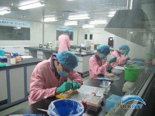 广西科技代表团访问深圳华大基因研究中心