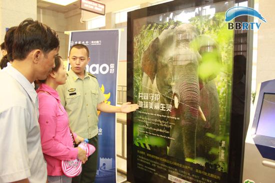 悬挂保护野生动物宣传标语