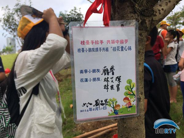 67桂台儿童手拉手 共植友谊林