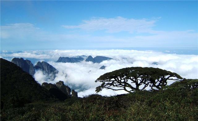 风景名胜区,也广西最大,最重要的水源林区,国家级森林公园,国家级自然