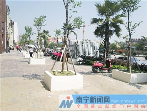 原本宽敞的过道和广场商业街的部分道路上,突然多出上百个白色的树池