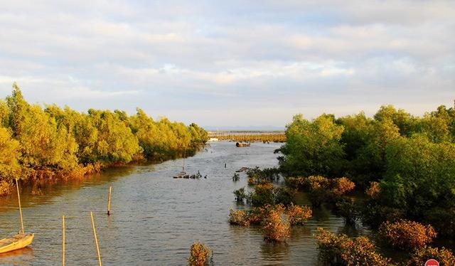 北连茅尾海红树林自然保护区