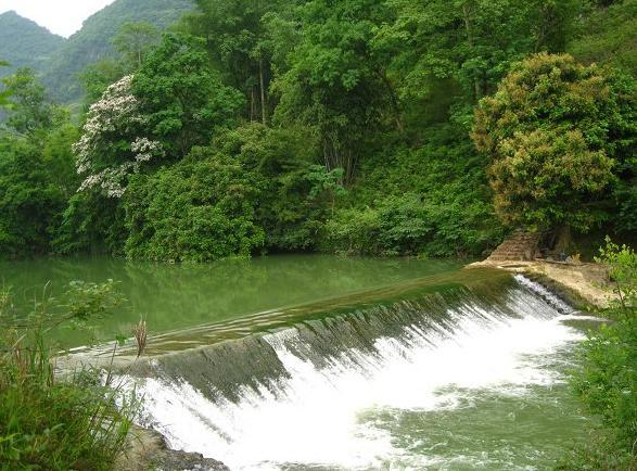 龙灵洞旅游风景区,地处广西马山县周鹿镇大坛村,这里具有典型的岩溶
